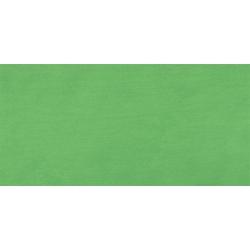 Akrylové farby TERZIA 500ml Chrome green