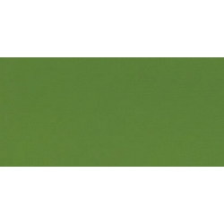 Akrylové farby TERZIA 500ml Sap green