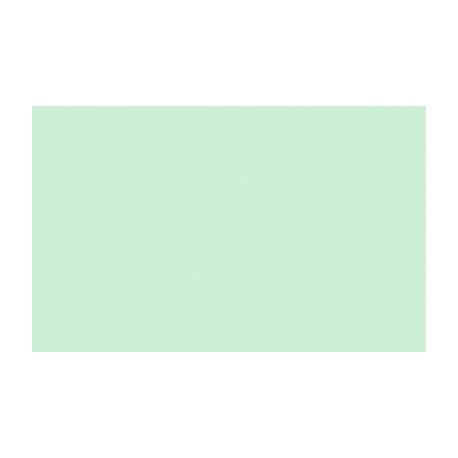 Fotokartón lesklý 250g A4 ALASKA zelený