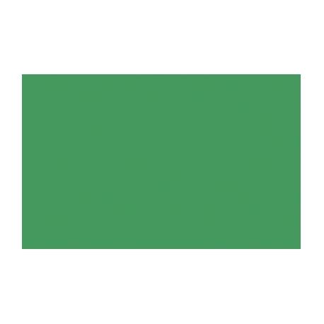 Fotokartón lesklý 250g A4 tmavo zelený