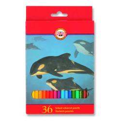 Ceruzky 36 farebné v krabici 3555/36