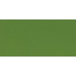 Akrylová farba TERZIA 125ml Sap green